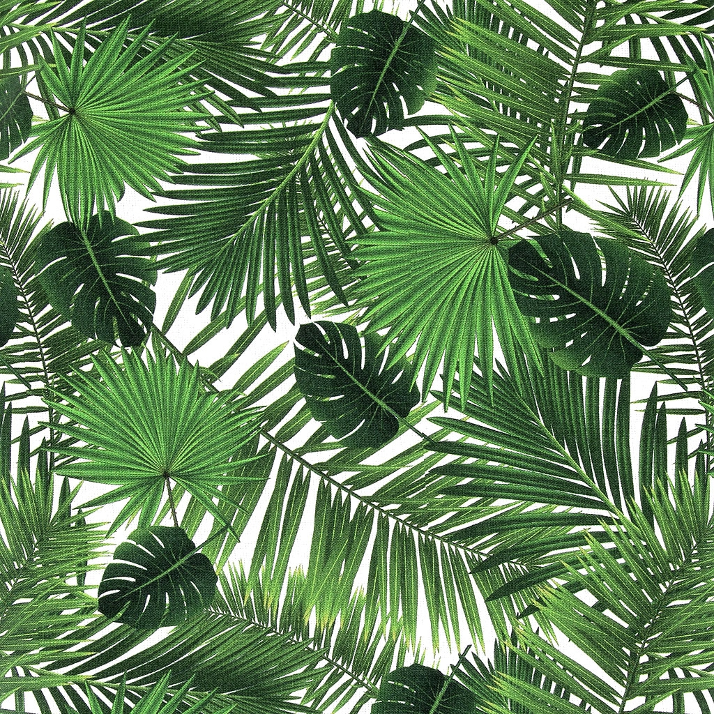 baumwolle stoff palmen bl tter von monstera und palm x10cm perles co. Black Bedroom Furniture Sets. Home Design Ideas